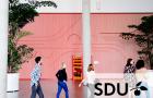 Syddansk Universitet image